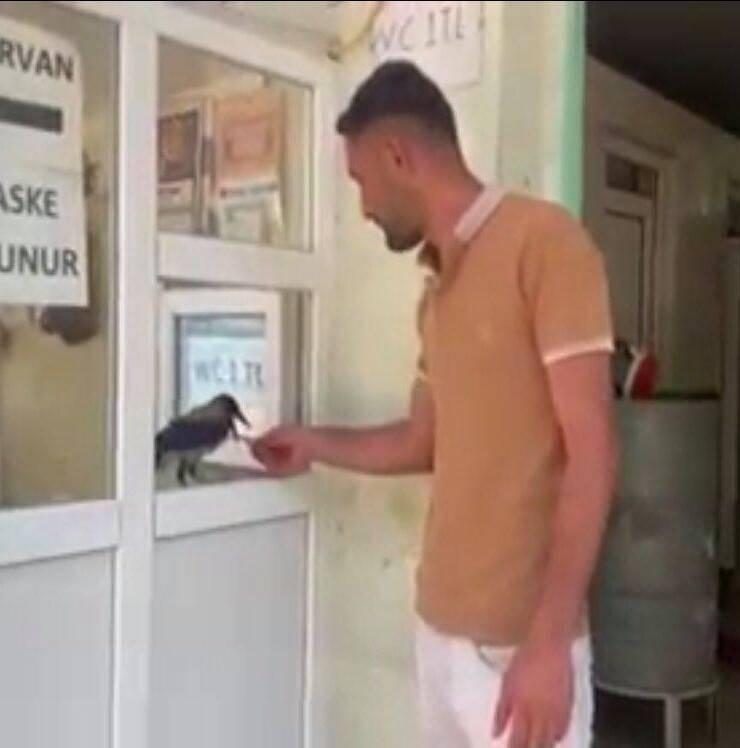 Cabbar che dà il resto ai clienti (Screen video Facebook)