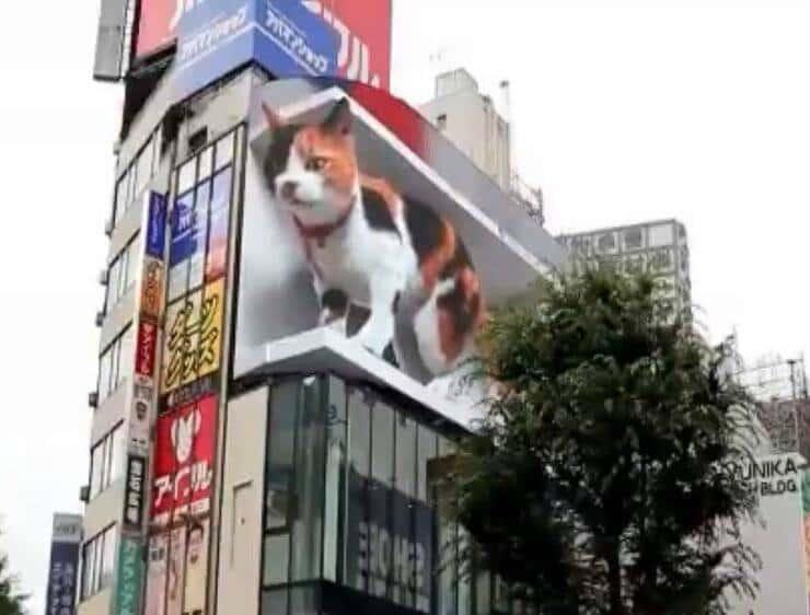 Cartellone pubblicitario (Screen video Twitter)