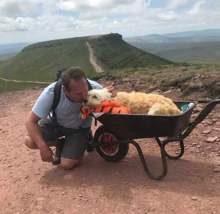 cane malato carriola montagna
