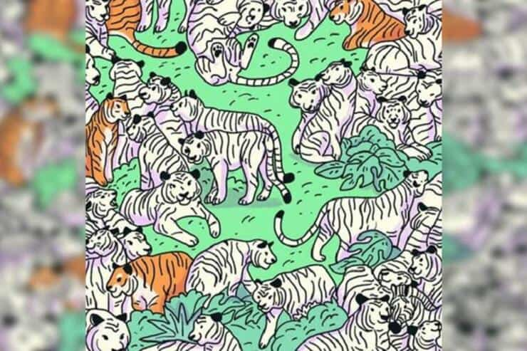 Trova la zebra tra le tigri nel test visivo inesplicabile