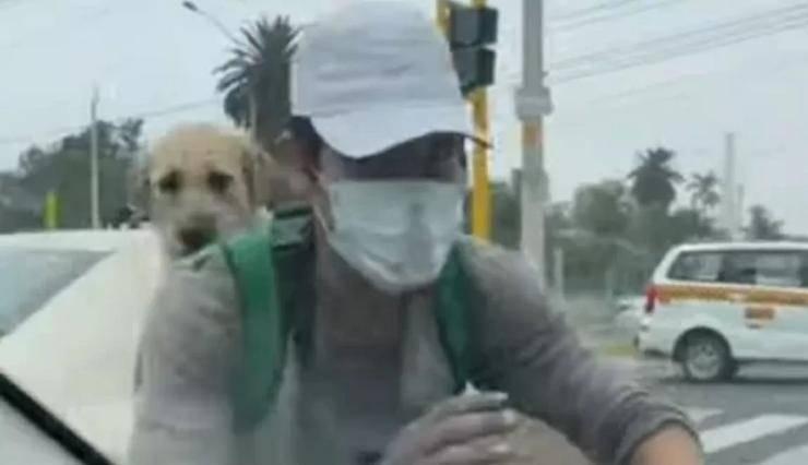 Il ragazzo e il cane ( Foto video)