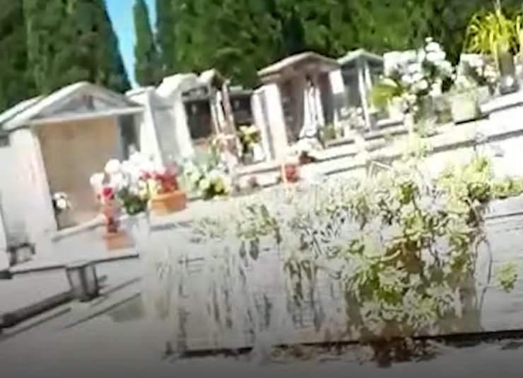 cane tomba cimitero cisterna