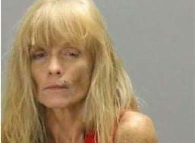 Robin Denese Pennington di 58 anni è stata arrestata dopo che gli agenti hanno trovato nella sua proprietà 45 cani e 11 gatti in pessime condizioni di salute (Foto Facebook)