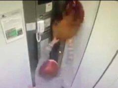 Donna in ascensore con uno dei suoi cuccioli incastrati tra le porte (Screen Video)
