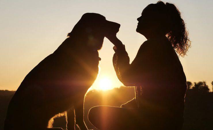L'amore tra uomo animale (Foto Pixabay)