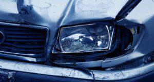 cane scappa incidente auto