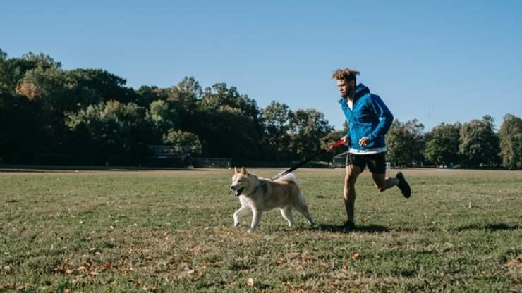 insegnare al cane a correre con te