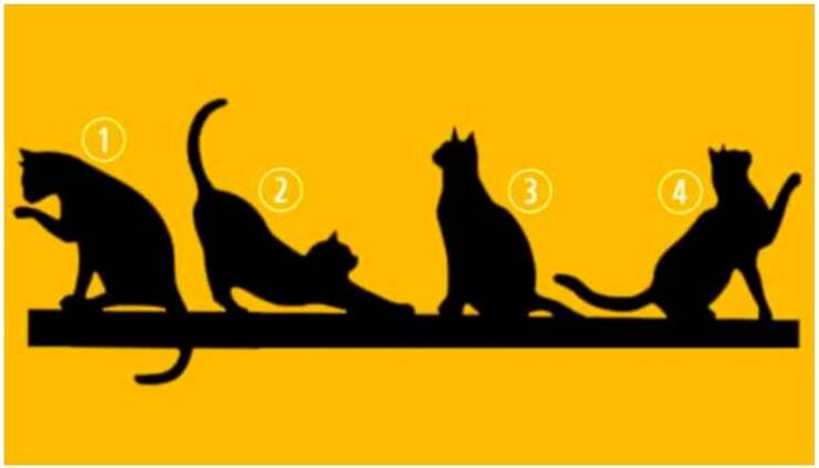 Il test visivo dei gatti che rivelano il vostro scopo e la vostra personalità
