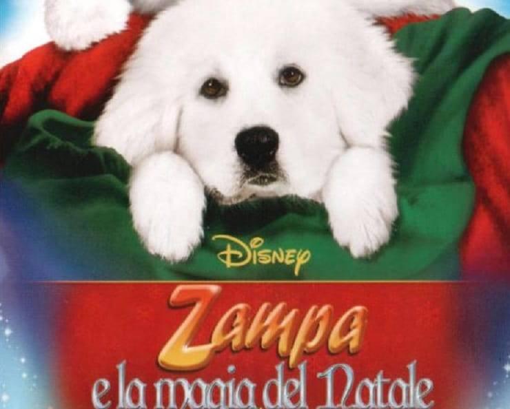 nome razza Zampa e la magia del Natale