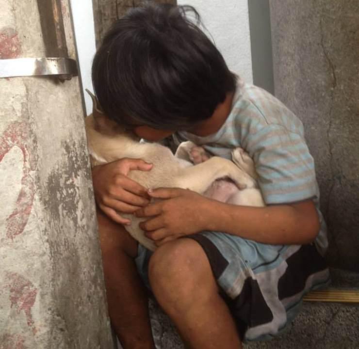 bambino senzatetto ninna nanna cane