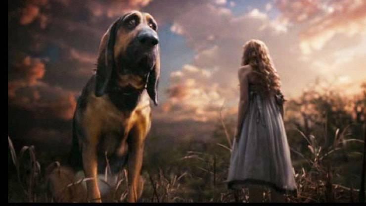 cane alice ne paese delle meraviglia