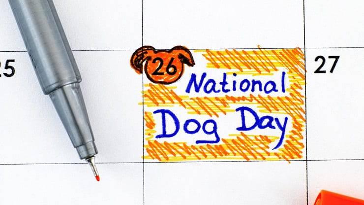 Giornata mondiale cane 2021