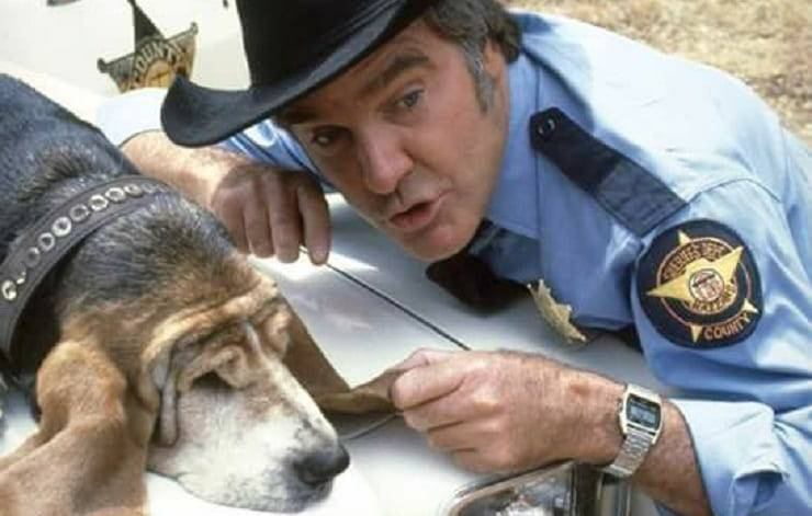 cane di Boss Hogg