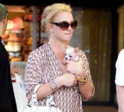 Britney Spears con il cagnolino (Screen Facebook)
