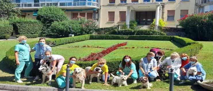 Progetto Pet Visiting al Burlo di Trieste (Screen Facebook)