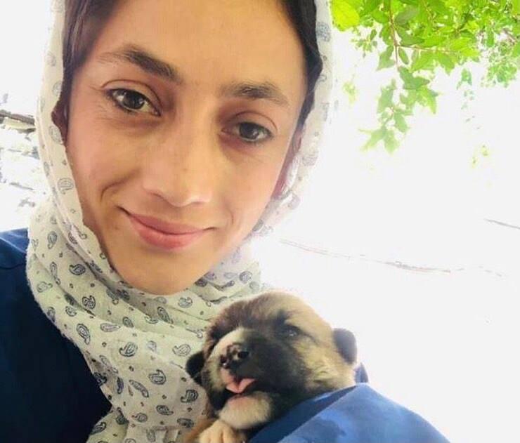 Veterinaria del Nowzad Dogs (Screen Instagram)