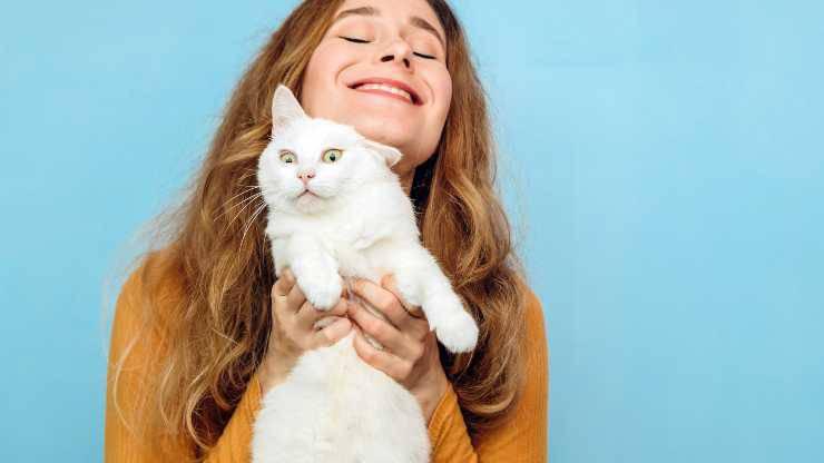 abituare il gatto a stare in braccio