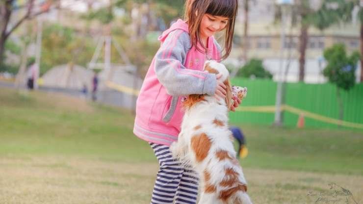 insegnare al cane ad interagire con i bambini