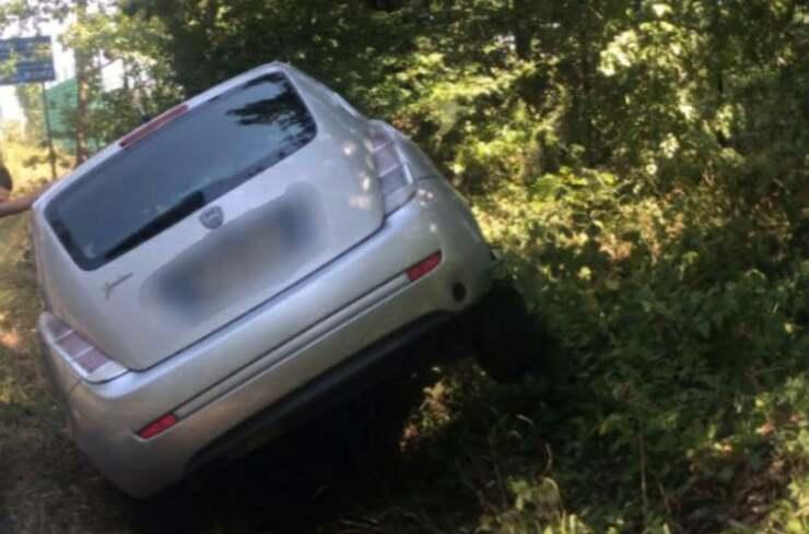 Serpente causa un incidente infilandosi in una macchina in movimento