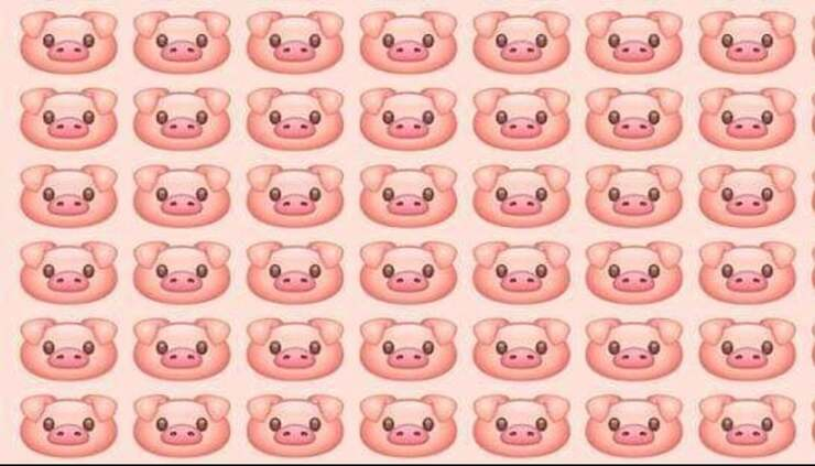 Il test visivo del maialino diverso