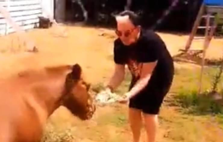 Cristiano e il cavallo (Foto video)