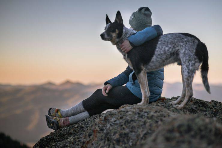 Razze di cani protettivi