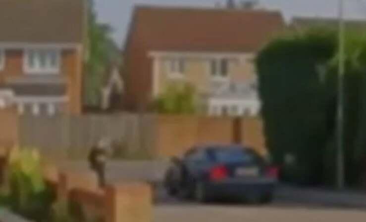 Il rapimento del cane ad un bambino di 3 anni (Screen Video)