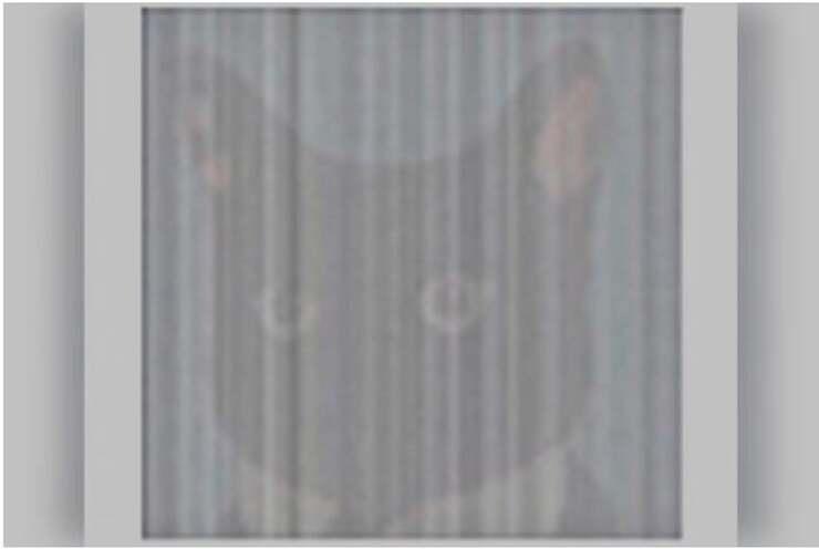 Soluzione del test visivo del codice a barre