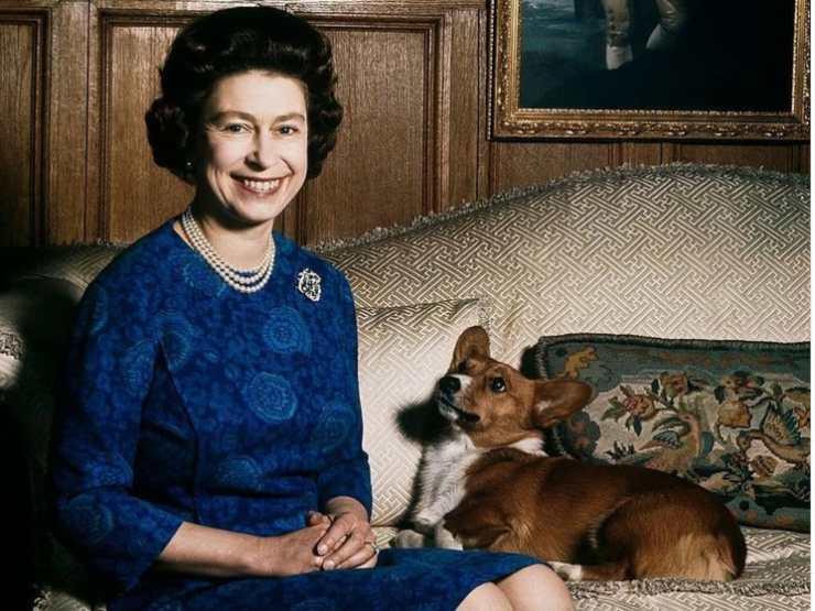 La Regina Elisabetta e il suo cane Corgi