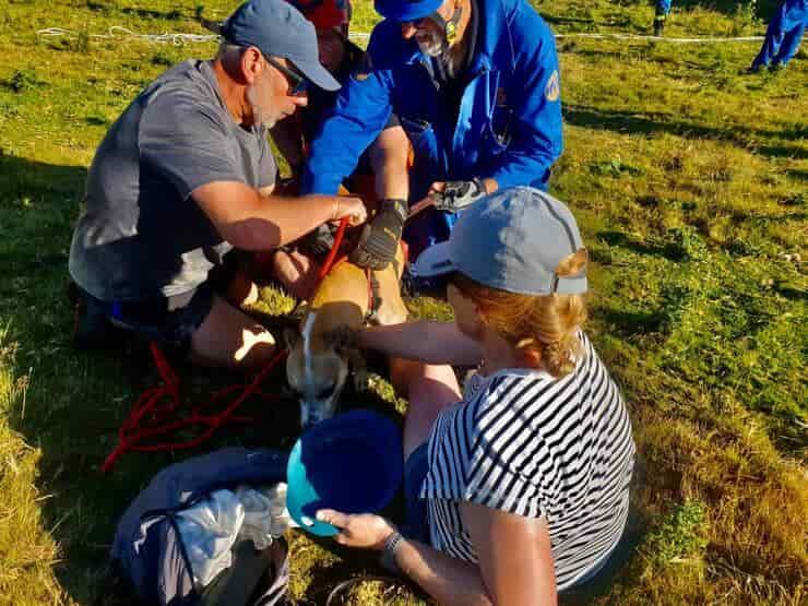 Il salvataggio del cane precipitato e del proprietario bloccato nel fango (Foto Facebook)