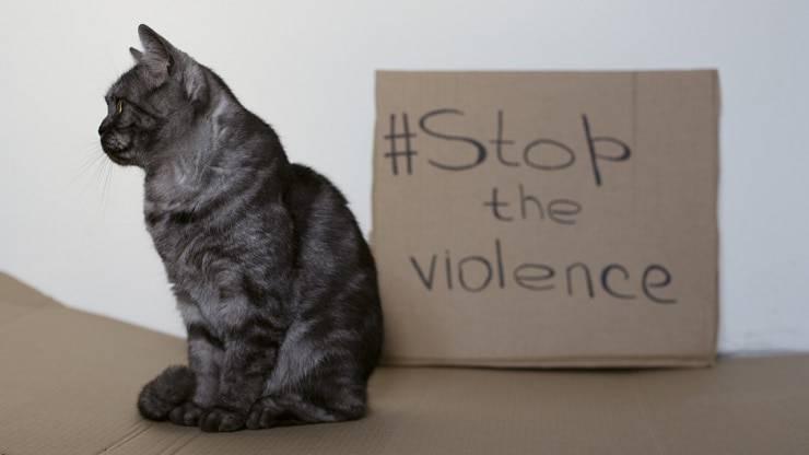 Giornata della non violenza
