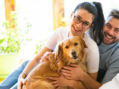I cani capiscono le nostre intenzioni