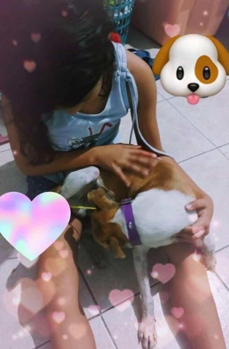 Bimba riabbraccia il suo cucciolo (Screen Facebook)