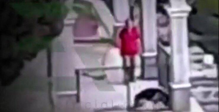 Cane cerca riparo dalle urla e violenze del padrone (Screen video Instagram)