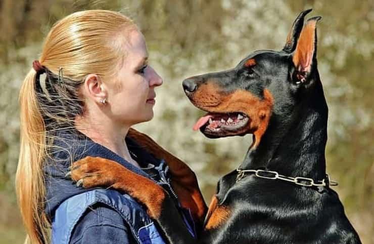 Cane con la sua padrona (Foto Pixabay)