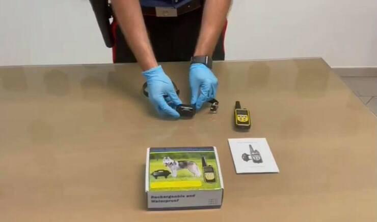 Collare elettrico (Screen video)