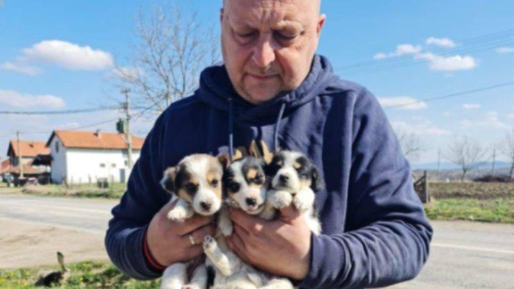 Dejan insieme ai suoi cani