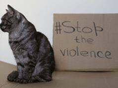 2 ottobre giornata non violenza