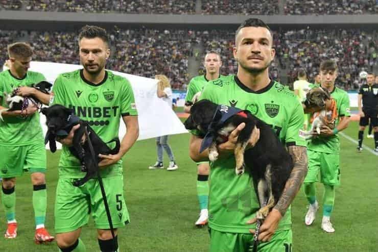 I giocatori presentano i cuccioli pronti per l'adozione (Screen Facebook)