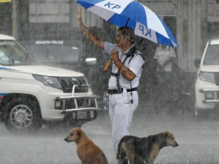 Il poliziotto ed i cani nel traffico