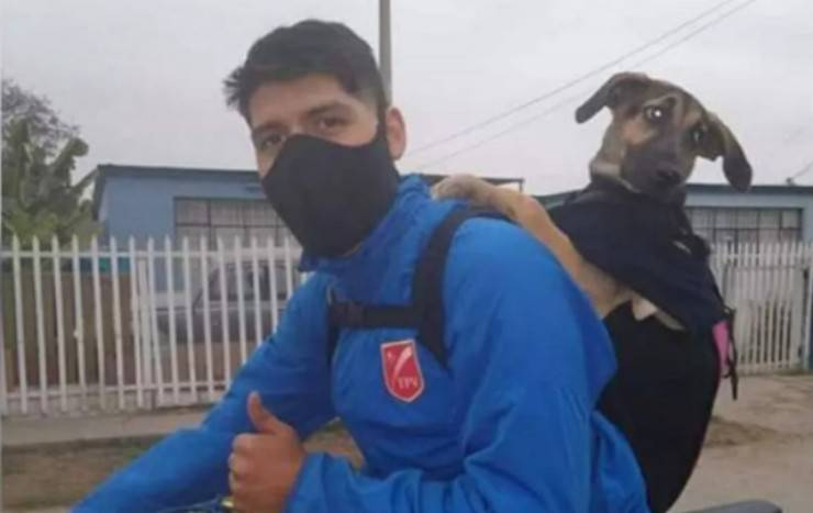 Piero e la cagnolina