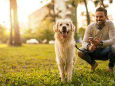 cane ricorda quello che facciamo