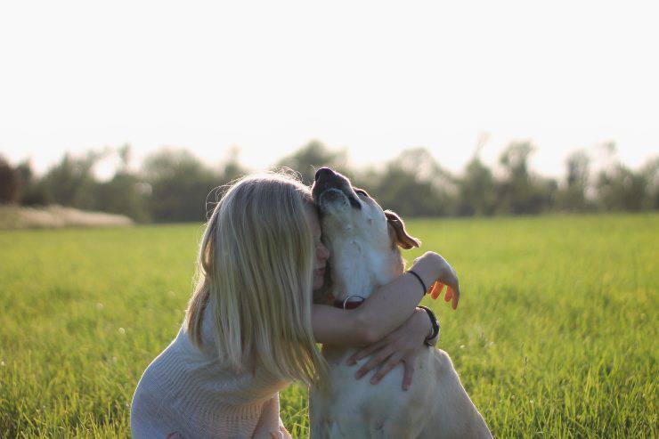 Perché il cane sa se stai male