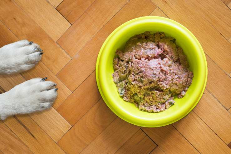 Dieta YUM per cani