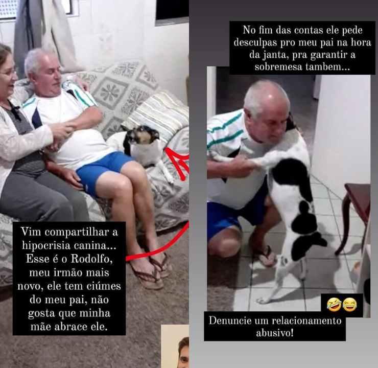 cane ringhia proprietario