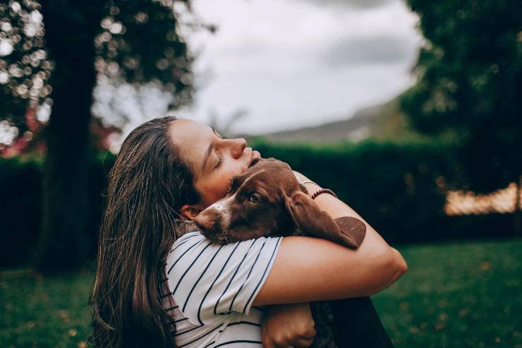 La sensibilità del cane