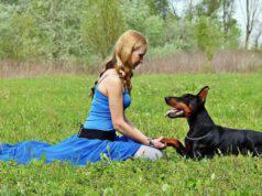 insegnare al cane il comando guardami