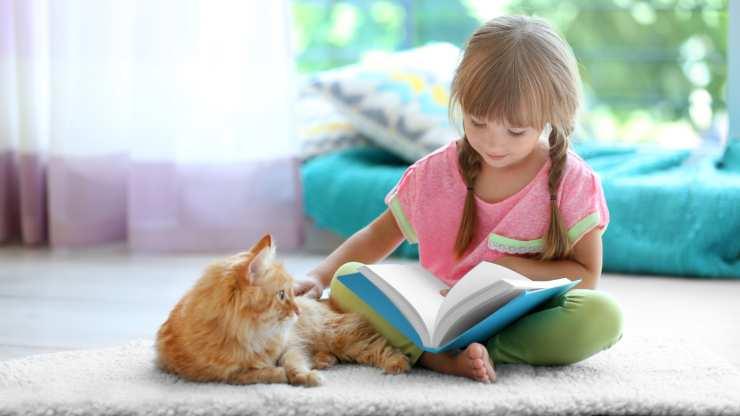 insegnare al gatto ad andare d'accordo con bambini