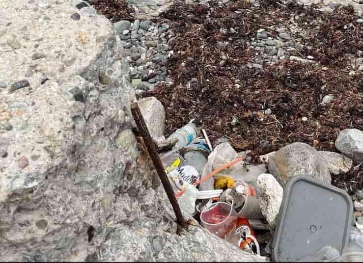 Cane legato a catena abbandonato in attesa della marea (Foto Facebook)