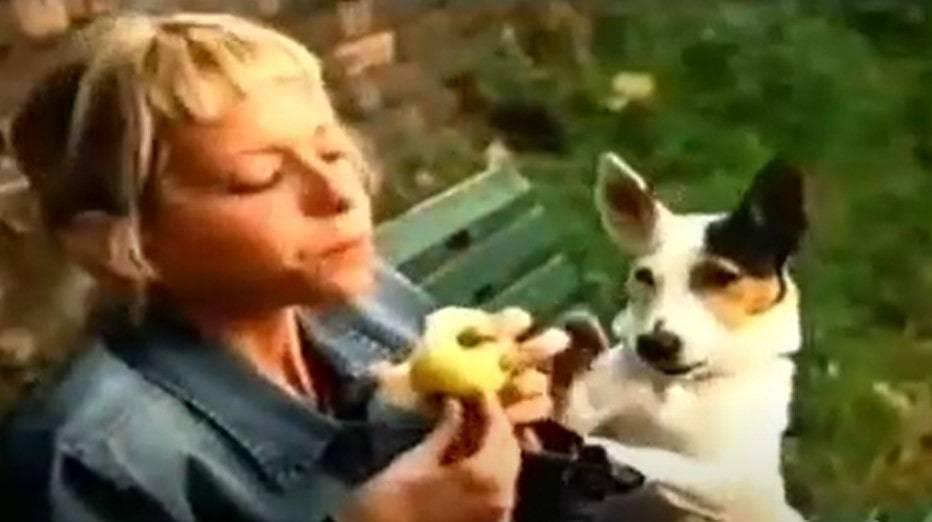 Cane della Melinda